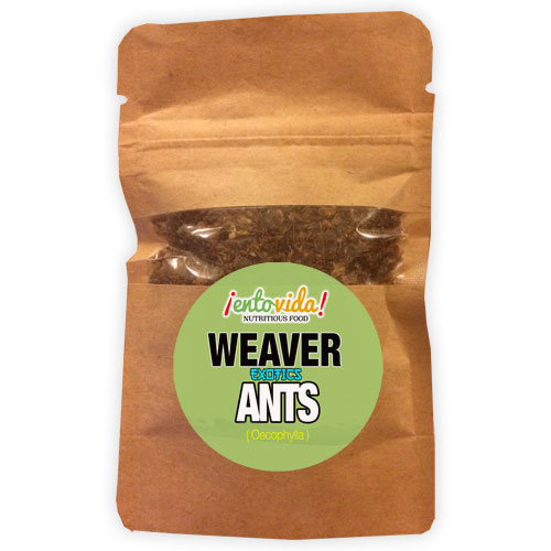 Weaver Ants For Sale