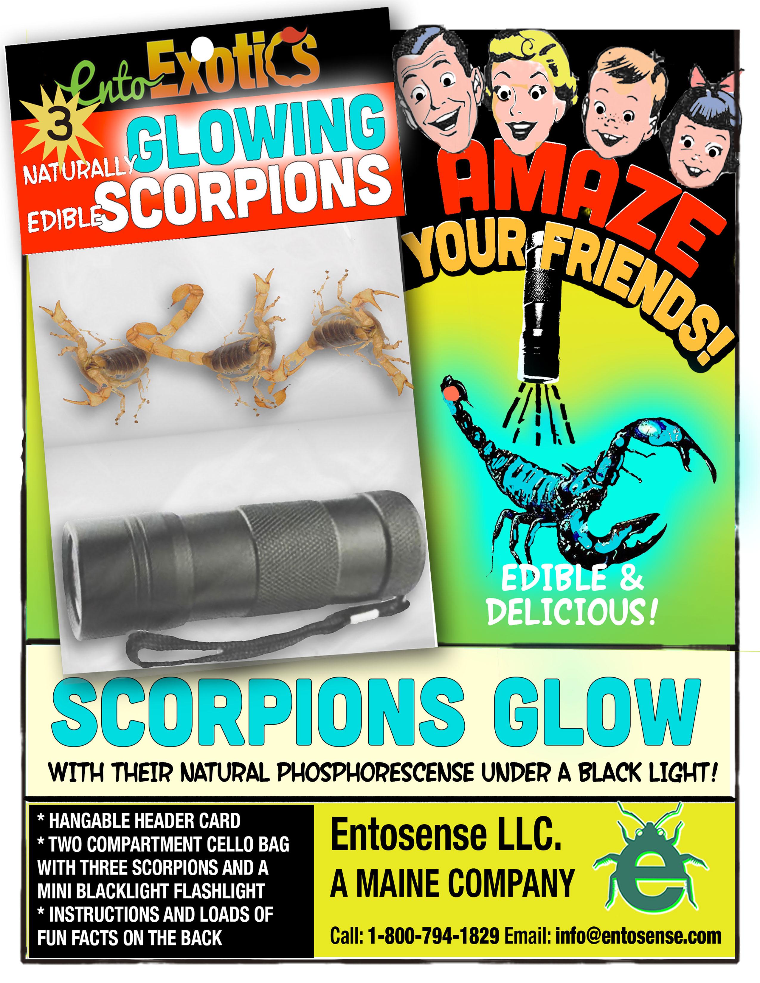 Glow Scorpions