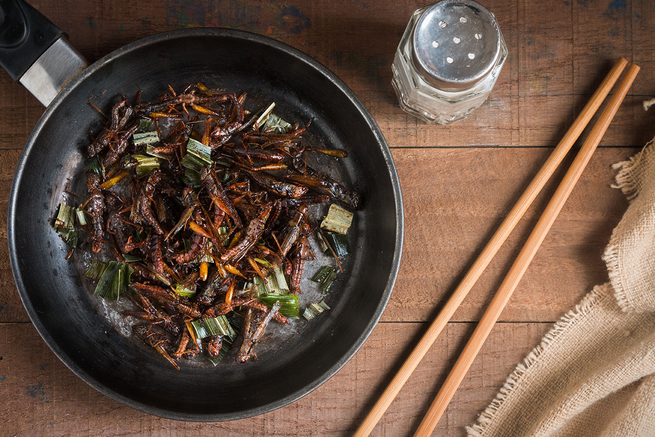 Why Eat Chapulines