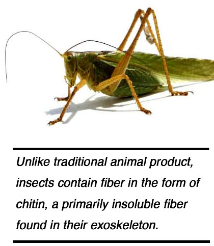 Insect Nutritional Values