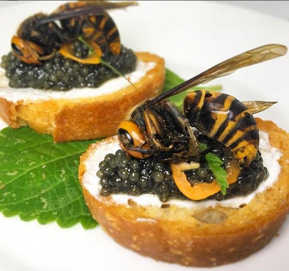 Edible Murder Hornets